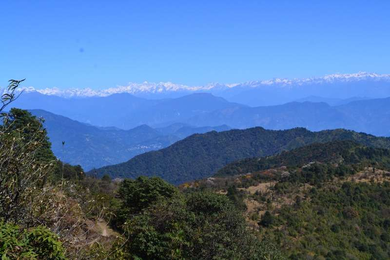 Jeep Safari tours to Darjeeling Singalila National Park